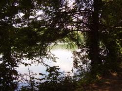 River2_2