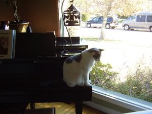 Biggie_piano